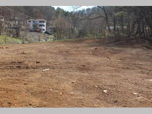 317 Baird Cove Road                                                                                 ,Asheville                                                                                           ,NC-28804